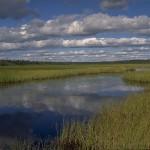 Suksenjärvi. Kuva: Teuvan kunta